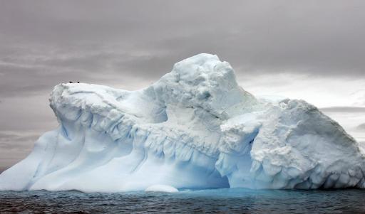 Photo prise le 9 novembre 2007 dans l'Antarctique © AFP/Archives Rodrigo Arangua