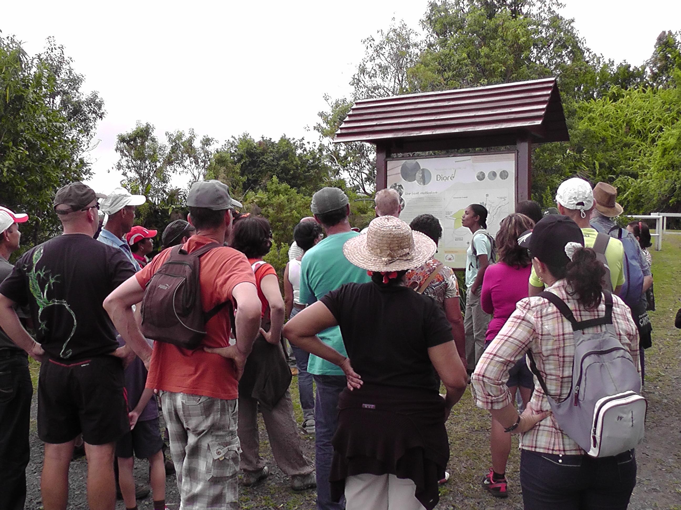 Saint-André, La Réunion: des animateurs de l'association Allons Pren'Dioré en Mains sensibilisent le publiques aux problématiques environnementales qui touchent La Réunion lors d'une visite de la forêt de Dioré. © Allons Pren'Dioré en Mains