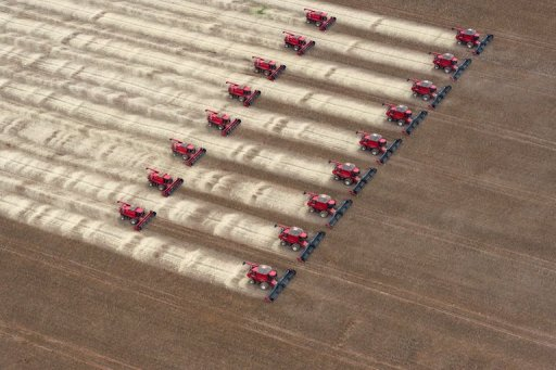 Combine harvesters crop soybeans during a demonstration for the press in Mato Grosso, Brazil, on March 27, 2012. © AFP/File Yasuyoshi Chiba