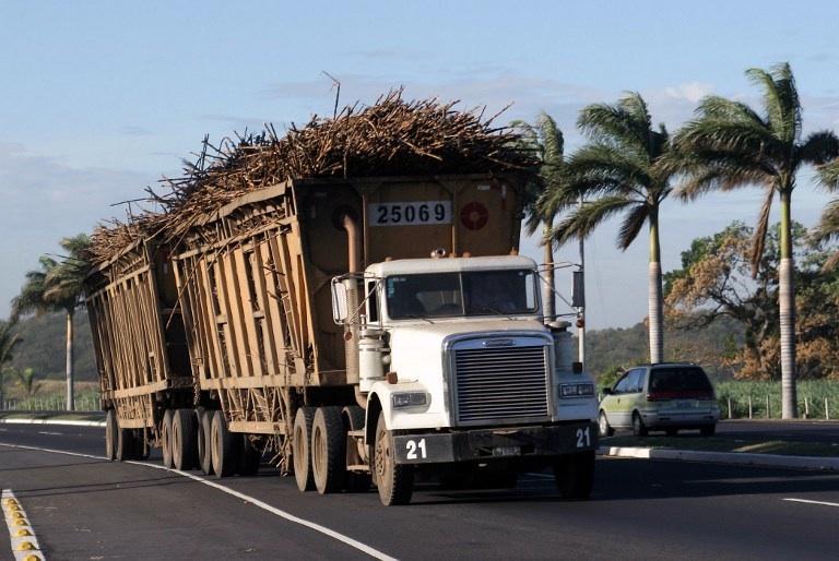 Guatemala, Escuintla: un camion chargé de cane à sucre au Guatemala en février 2007. AFP PHOTO/Orlando SIERRA