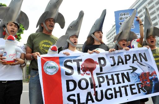 Environmental activists wear dolphin costumes to protest the annual slaughter of dolphins in Taiji, Japan, in front of the Japanese embassy in Manila on October 14, 2010  © AFP/File Ted Aljibe