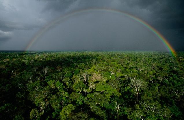 En Amazonie Brésilienne, les routes se construisent aussi vite que les forêts sont détruites menacant la biodiversité exceptionnelle de cette région. Orage sur la forêt amazonienne près de Téfé, État d'Amazonas, Brésil (3°32' S - 64°53' O). © Yann Arthus-Bertrand