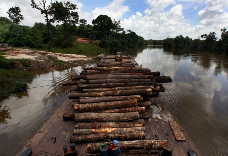 Amazonie : photo prise sur le long de la rivière Moju montrant une barge chargée de bois illégalement coupé et confisqué par les autorités brésiliennes. © AFP PHOTO/ANTONIO SCORZA