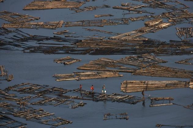 Flottage du bois dans la lagune de Lagos, Nigeria (6°29' N - 3°23'E). © Yann Arthus Bertrand / Altitude