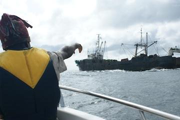 En mer au large de l'Afrique de l'Ouest. L'ONG Environmental Justice Foundation travaille avec les populations locales pour localiser les bateaux qui pêche illégalement au large de leurs côtes et ainsi luter contre la pêche illicite. © Environmental Justice Foundation