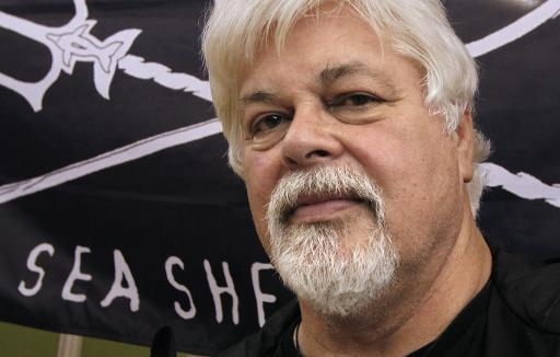 Le militant écologiste canadien Paul Watson, visé par une demande d'arrestation d'Interpol depuis 2012 et arrivé aux Etats-Unis cette semaine, a affirmé avoir obtenu un visa de l'Australie. © AFP/Archives François Guillot