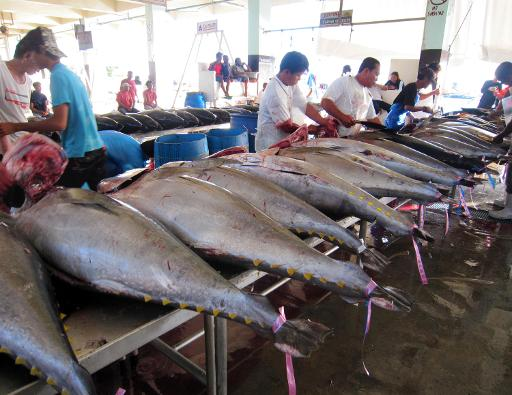Workers clean tuna fish for export at the port in General Santos City, on the southern Philippine island of Mindanao on December 2, 2012 © AFP/File Paul Bernaldez