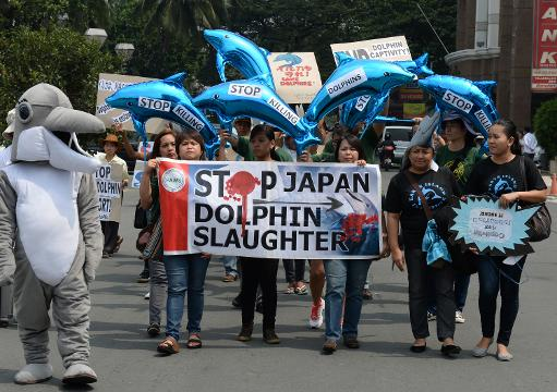 Protesters hold dolphin-shaped ballons and anti-dolphin slaughter placards as they march to the Japanese embassy in Manila on September 2, 2013  © AFP Ted Aljibe