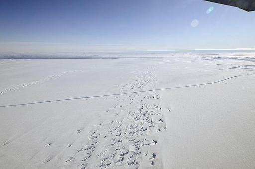 Antarctic glacier beyond point of no return