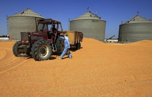 étiquetage des OGM