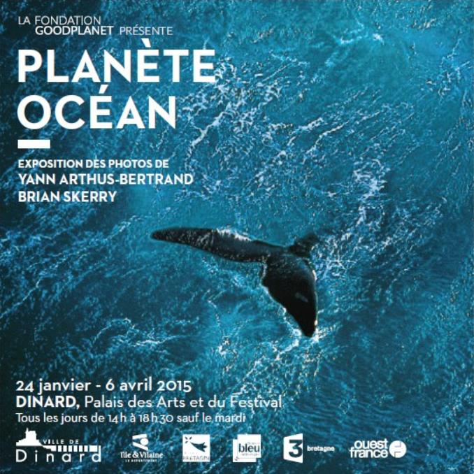 Baleine au large de la péninsule de Valdés, Argentine (42°23' S - 64°29' O). © Yann Arthus-Bertrand / Altitude Paris