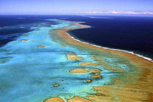 Photo prise le 13 juin 2006 de la barrière de corail de Nouvelle-Calédonie, l'une des plus vastes au monde © AFP/Archives Marc Le Chelard