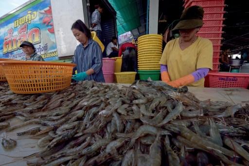 Des travailleurs trient des crevettes en Thaïlande. © AFP PHOTO / PORNCHAI KITTIWONGSAKUL