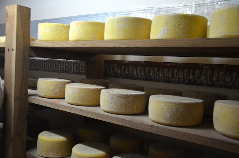Photo d'Amélie Durand - Moudallal - Les produits laitiers produits par l'EARL de Belle Eau sont majoritairement vendus en vente directe sur les marchés, via les circuits courts, mais aussi dans des restaurants.