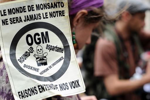 Des manifestants anti-Monsanto, le 23 mai 2015 à Toulouse © AFP/Archives Remy Gabalda