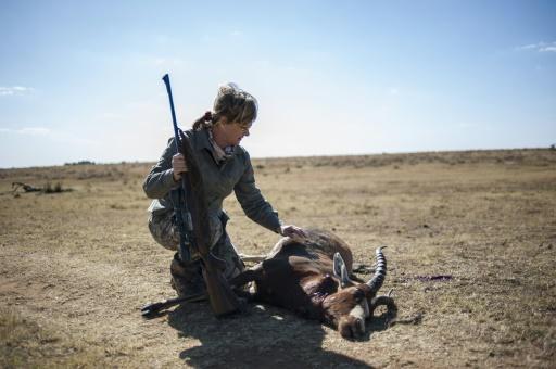 chasse afrique