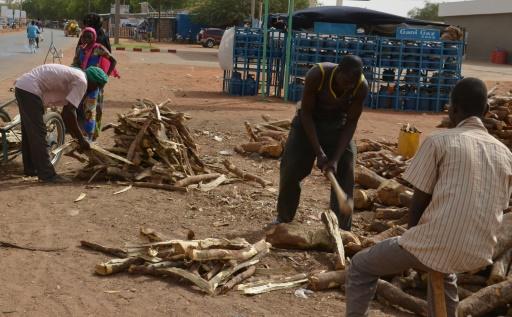 niger desertification