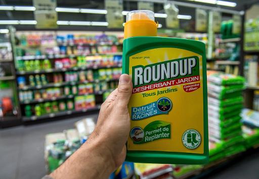 Un bidon de Roundup de Monsanto dans une jardinerie à Lille, le 15 juin 2015 © AFP PHILIPPE HUGUEN