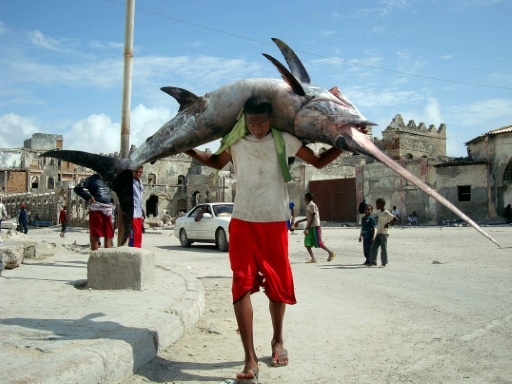 peche piraterie somali