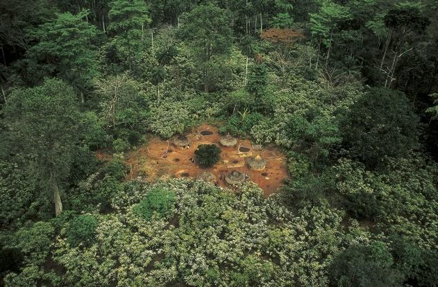 Village avec petite plantation de cacaoyers, Man, Côte-d'Ivoire (7°24' N – 7°32' O). © Yann Arthus-Vertrand/Altitude