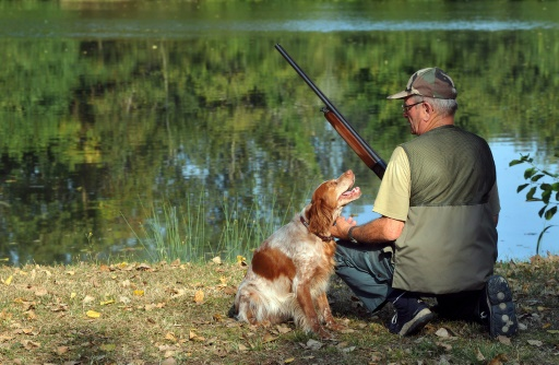 dimanche chasse