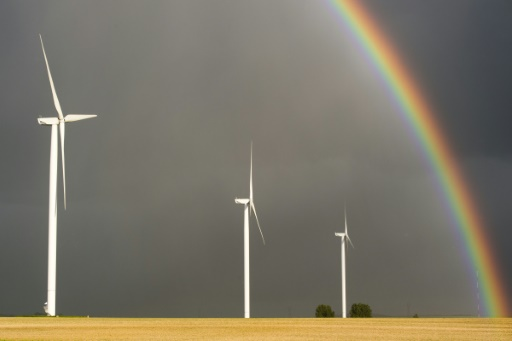 Près de 5.000 entreprises françaises devront avoir réalisé un audit énergétique avant le 5 décembre 2015 sous peine de possibles sanctions © AFP/Archives Francois Xavier Marit