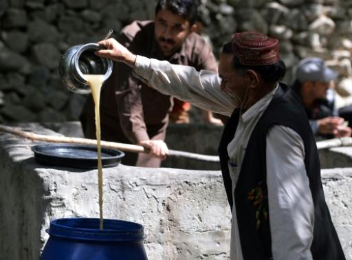 vin, pakistan
