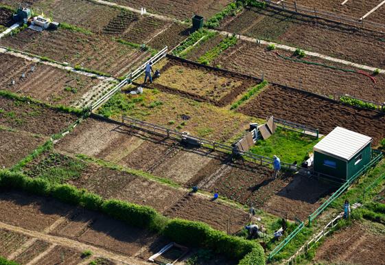 ©Yann Arthus-Bertrand, Jardins ouvriers près de Metz, France