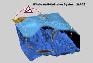 Schéma explicatif du fonctionnement du dispositif mis en place pour éviter les collisions ©Rolex