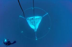 Un plongeur vérifie une antenne immergée à 20 mètres de profondeur ©Rolex Awards/Kurt Amsler
