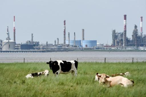 quotas de CO2