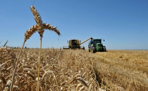 climat agriculture
