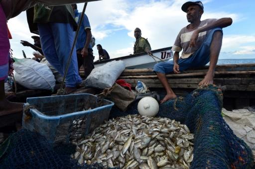 kenya pêche