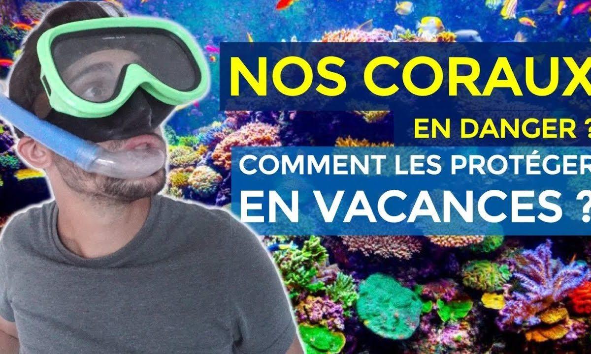 Les coraux en danger