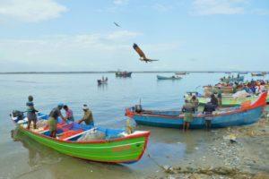pêcheurs heros