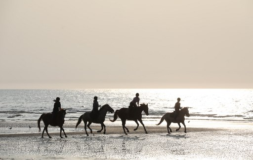 cheval loisir Jean-Pierre Digard