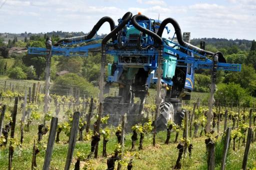 agriculture bio cuivre