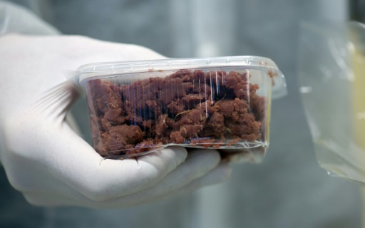 viande de laboratoire