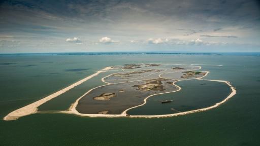 Marker Wadden pays bas iles artificielles biodiversité