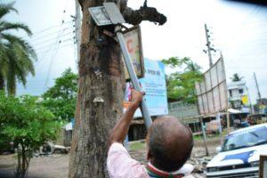 bangladesh arbre sauver arbre