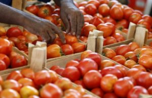 mayotte tomates insecticide interdit en france