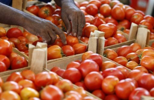 mayotte tomates insecticide interdit en france