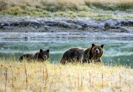senat americian protectin des parcs naturels