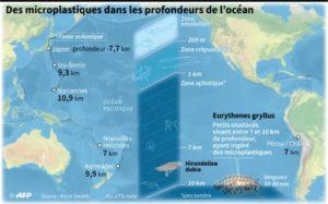 microplastiques océans
