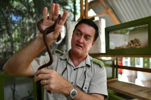 morsure de serpents poison