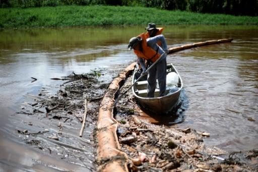 barrage brésil poissons morts
