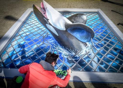 orques belugas greenpeace russie