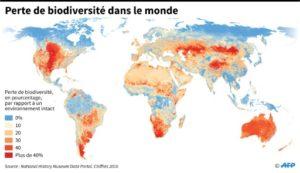 nature ipbes biodiversite