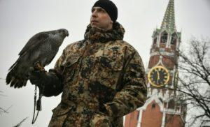 moscou kremlin faucons