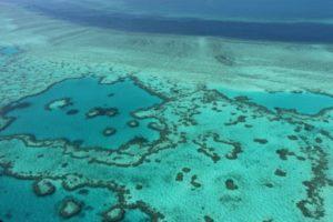 grands barriere corail rechauffement